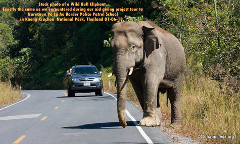 Elephant_on_the_Road_Thailand_Gift_of_Happiness